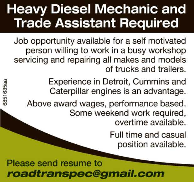 ABOUT THE ROLE