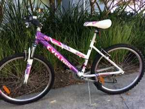 Cyclops bike with alloy frame and rims. 18speed shimano gear system. Great condition.