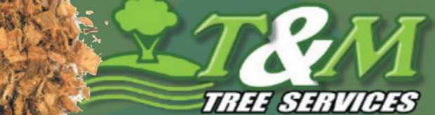 Large tree specialist