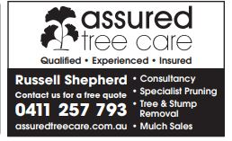 Contact us for a free quote 0411 257 793
