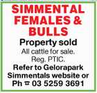 SIMMENTAL FEMALES & BULLS