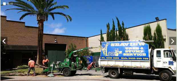 For all of your Adelaide tree lopping and tree stump removal needs. We have been providing profes...