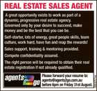 REAL ESTATE SALES AGENT