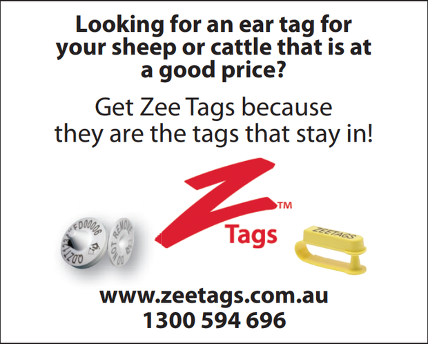 Looking for an Ear tag for your Sheep or Cattle that is at a good price?