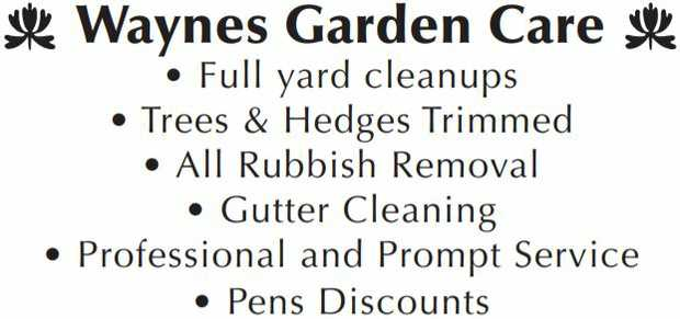 Full Yard Cleanups