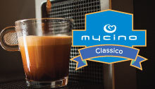 Earn 50k+, 10-15 hrs pw, with guaranteed income. National coffee company Mycino requires local...