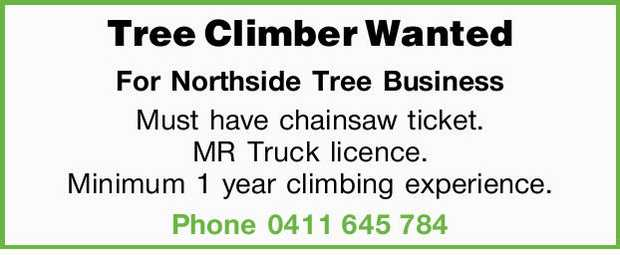 Tree Climber Wanted For Northside Tree Business Must have chainsaw ticket. MR Truck licence. Mini...