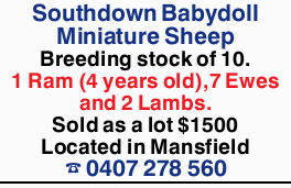 <p> Breeding stock of 10. </p> <p> 1 Ram (4 years old), 7 Ewes and 2...</p>