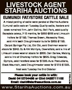 LIVESTOCK AGENT STARIHA AUCTIONS EUMUNDI FAT/STORE CATTLE SALE A mixed yarding of cattle were yarded...