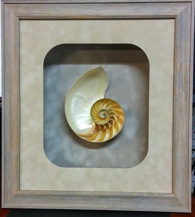 BEPPIE'S FRAME DESIGNS