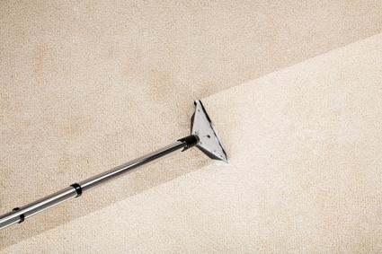 "<p align=""LEFT"" dir=""LTR""> <span lang=""EN-AU"">S.D.L. CLEANING<br /> • Carpet Cleaning</span></p>"
