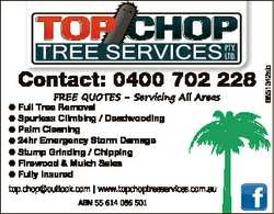 FREE QUOTES - Servicing All Areas Full Tree Removal Spurless Climbing / Deadwooding Palm Cleaning...