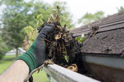 <p> <br /> BAY GUTTER VAC & MAINTENANCE<br /> Corporate . Commercial . Residential</p>