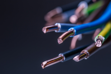 """<p align=""""LEFT"""" dir=""""LTR""""> <strong><span lang=""""EN-AU"""">Electrical Design, Wiring and...</span></strong></p>"""