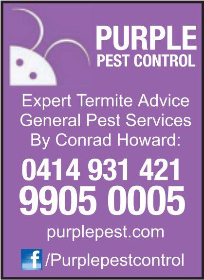 Expert Termite Advice   General Pest Services