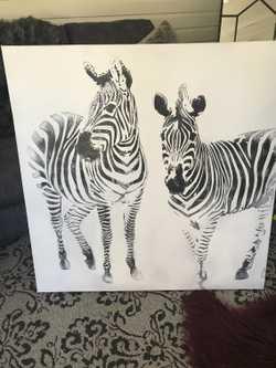 1x1m b&w textured zebra art. VGC