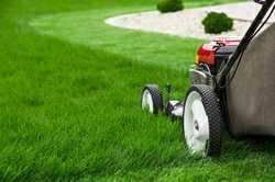 Most Lawns $35 - $45   Call Pardon My Garden