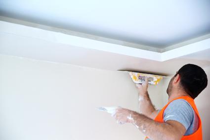 Ceiling/Wall Repairs  Cracks  Holes  Cornices  Water Damage  Insurance...