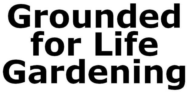 All Gardening Jobs   Mowing   Edging   Irrigation   Gutters   Yard clean-ups...