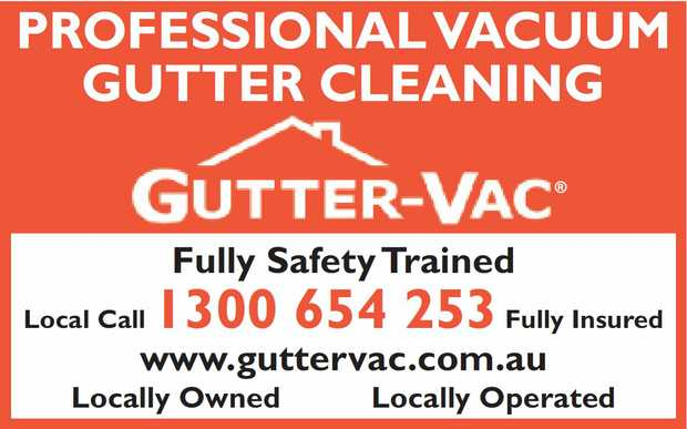 PROFESSIONAL VACUUM GUTTER CLEANING