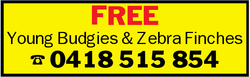 FREE   Young Budgies & Zebra Finches