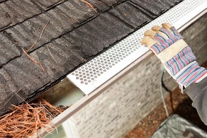 WILLIAM BENNETT | Home Maintenance | Tweed | The Mercury