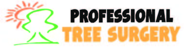 We Take Care Of All Your Tree Needs