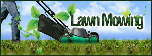 Lawn mowing odd jobs