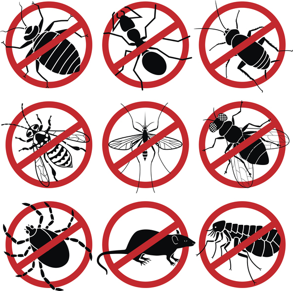 #Protect your most valued assets from spiders, cockroaches, Silverfish & ants.   #Flea...