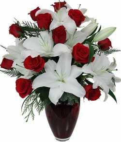 Thank you, Royal Darwin Hospital    To all the Royal Darwin Hospital nurses in Level 2 Ward B...