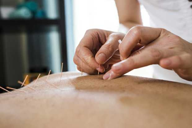 Acupuncturist & Chinese Medicine Practitioner 