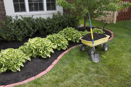 <p> AAA Abacus Gardening & Tree ServiceExp. landscaping, paving, turfing, retaining walls...