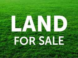 LAND NO DEPOSIT   Banks aren't lending, but we are. 2 Hectare lots on No Deposit. Power a...