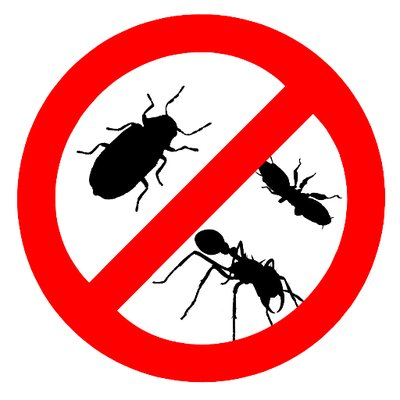 ALL ACTION PEST CONTROL 