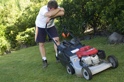 ZEST MOWING From Dromana to Mornington Call Paul 0417543524