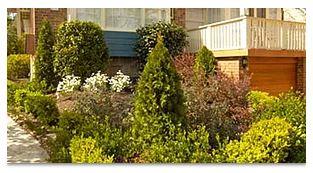 <p> Garden Advice </p> <p> Designs & ideas. </p> <p> Qualified horticulturist and...</p>