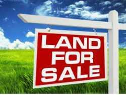 FARRAR. Land for sale   $360,000 ono   Zoned multiple dwellings in Farrar Palmerston clos...