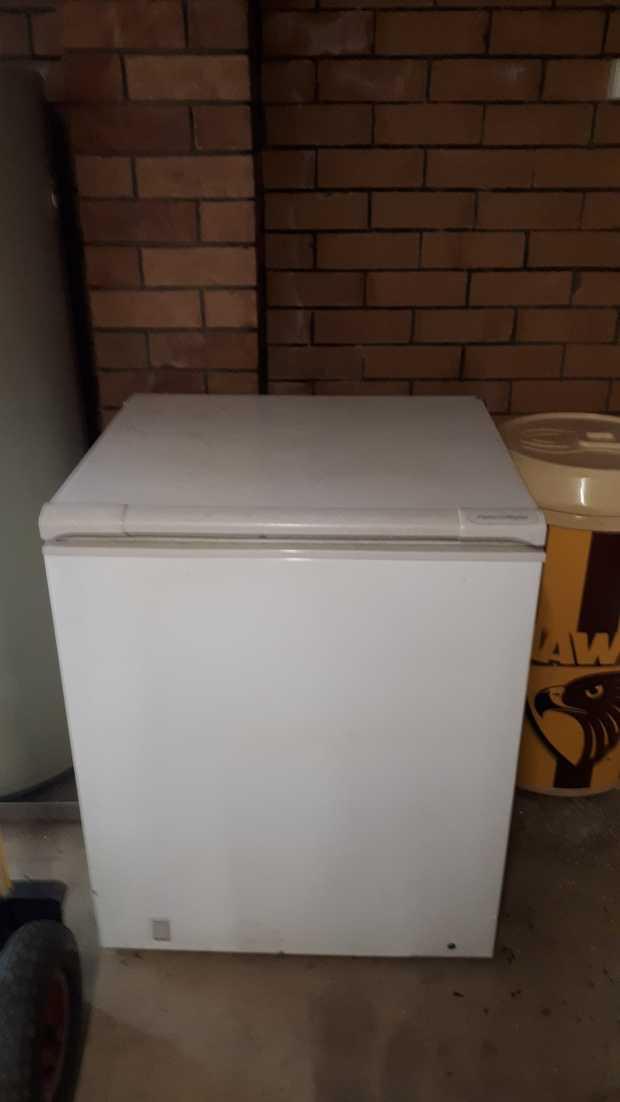 Box freezer chainsaw plants toys drawers bbq bric-a-brac. 7-5:30pm Sat only