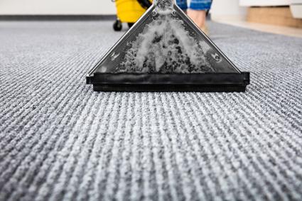 CARPET CLEANING- Pacific Carpet Care