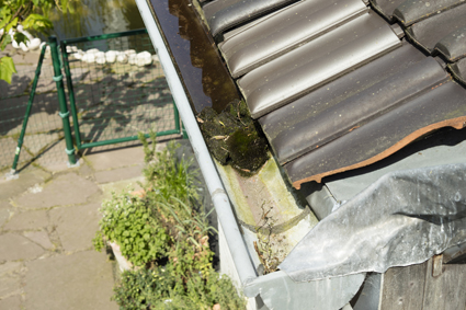 ABOVE ALL GUTTERING  