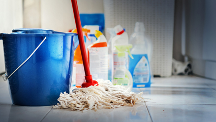 -Regular domestic spring cleaning.   TOP SERVICE   Call Tony & Marie!