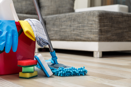 Domestic Cleans 