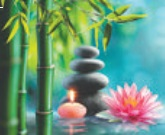 SOFT GENTLE   Relaxation Massage   Monday to Saturday   9.30am - 6pm.   Easy Parking
