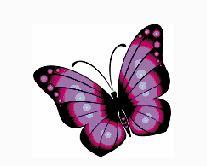 POLLARD.— Leanne Margaret.   19.2.1967 - 17.7.2019 Beloved eldest daughter of Sue and...