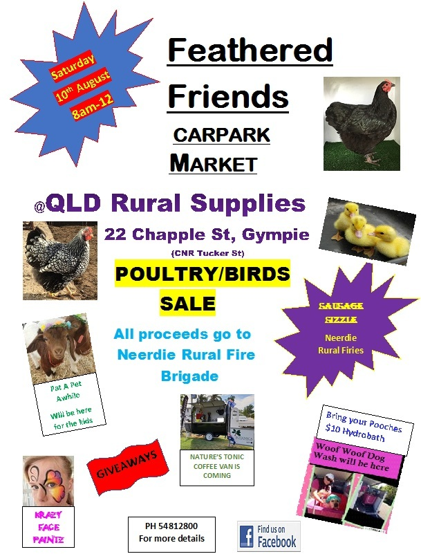 large selection of Poultry and related items for sale market style from multiple sellers, $10 Dog...