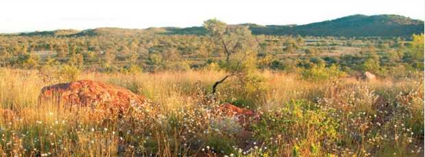 Aboriginal Community Officer   The Aboriginal Land Council of Tasmania seeks an Aboriginal person...