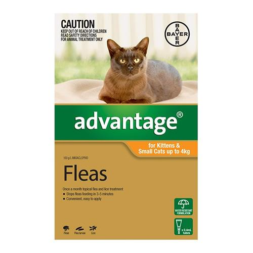 Advantage For Kittens & Small Cats Up To 4Kg (Orange) 4 Pack Cat Supplies Flea & Tick Control