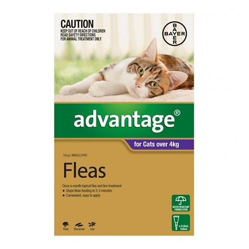 Advantage For Cats Over 4Kg (Purple) 6 Pack + 2 Pack Free Cat Supplies Flea & Tick Control