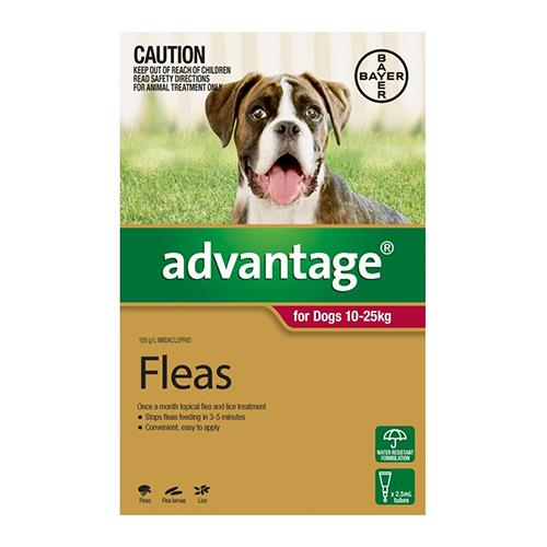 Advantage For Large Dogs 10 To 25Kg (Red) 12 Pack + 4 Pack Free