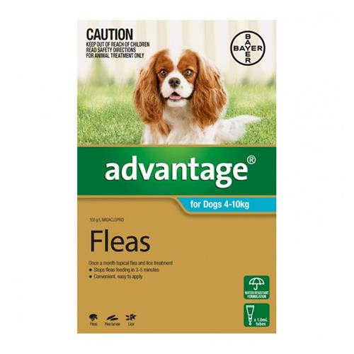 Advantage For Medium Dogs 4 To 10Kg (Aqua) 12 Pack + 4 Pack Free